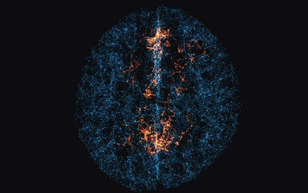 Neural Network Prototype